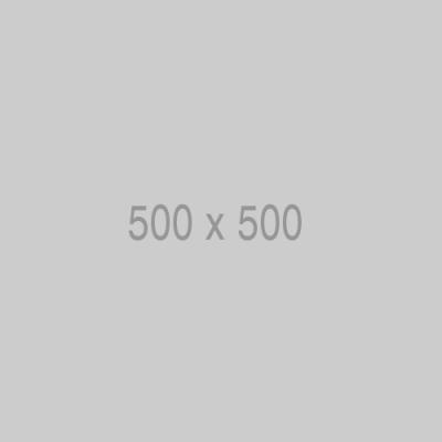 500x500